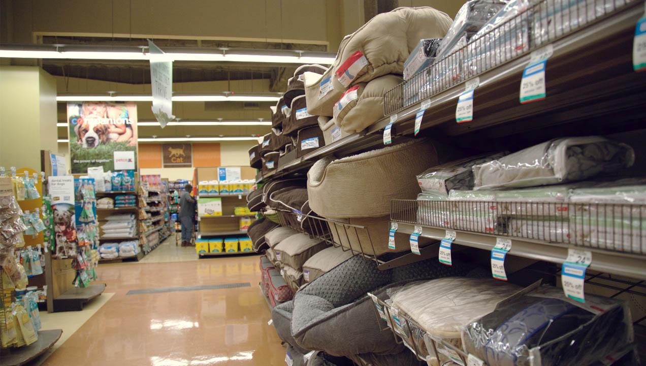 Pet store dog beds