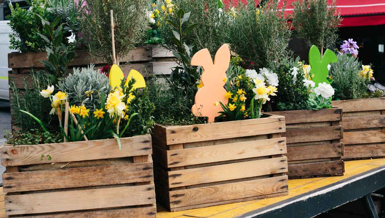 Easter bunnies in flower boxes