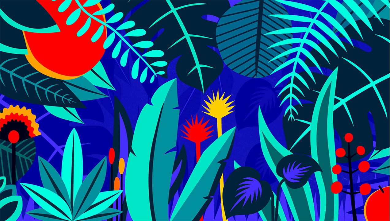 Illustration by Monica Giunchi